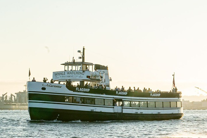 The Marietta of Flagship Cruises & Events