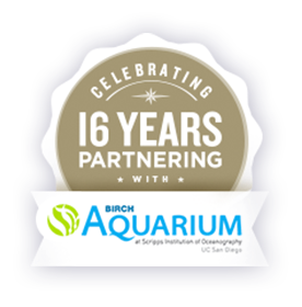 Celebrating 16 Years of Partnering with Birch Aquarium